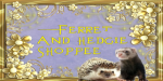 The Ferret and Hedgie Shoppee